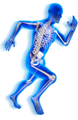 Physio Running Skeletal representation